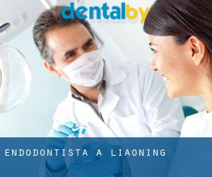 Endodontista a Liaoning