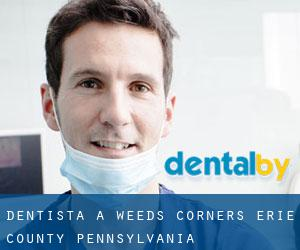 dentista a Weeds Corners (Erie County, Pennsylvania)